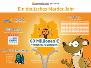 Infografik: Marder und Auto in Deutschland
