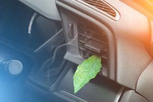 Prävention gegen Geruchsbildung in der Klimaanlage | autoreparaturen.de